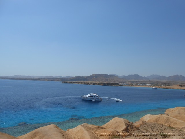 Sharm el Sheikh (5)